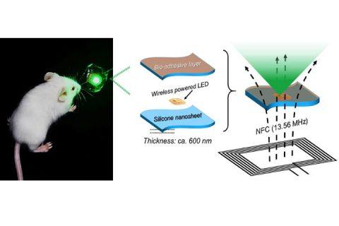 Nuovo dispositivo a LED per la cura dei tumori